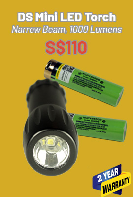 DS Mini LED torch